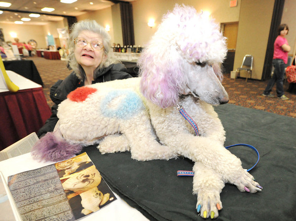 """Cotton,"" a four-year-old poodle, joins Rochelle Pruett in greeting guests at the Four State Women's Fare on Saturday at the Holiday Inn. The duo was assisting vendor Debra Pruett, of All Breed Paw Prints Mobile Grooming.<br /> Globe 