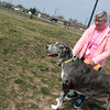 Globe/Roger Nomer<br /> Catherine Vessey and her dog Dodger visit the Parr Hill dog park on Tuesday.