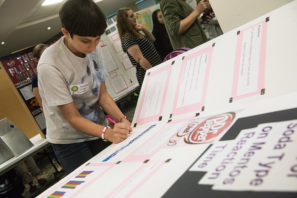 Globe/Roger Nomer<br /> Abigail Sanchez, a seventh grader at Carthage Junior High, prepares her exhibit on Tuesday at the Science Fair at Missouri Southern.