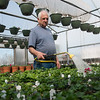 Globe/Roger Nomer<br /> Albert Farris waters plants on Thursday morning at Albert's.