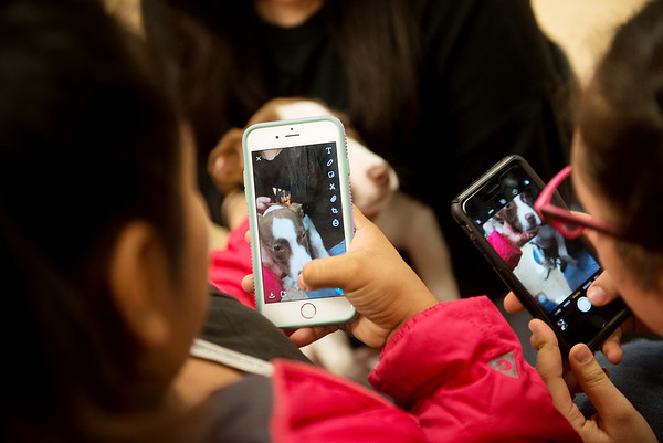 Carthage Junior High School students take photos of Lincoln during a Wonder Women Club meeting on Monday at the school.<br /> Globe | Roger Nomer