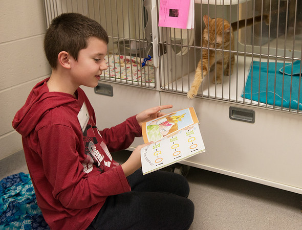 Tyson Rogers, 9, Joplin, reads to a curious cat on Saturday at the Joplin Humane Society.<br /> Globe | Roger Nomer