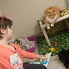 Adie Urrows, 7, Joplin, wears a pair of cat ears to read to cat on Saturday at the Joplin Humane Society.<br /> Globe | Roger Nomer