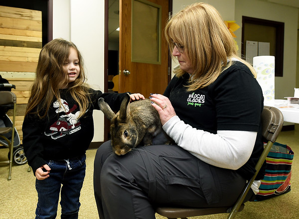 "Four-year-old Gage Tiberghien, left, pets longtime Wildcat Glades mascot ""Trevor"" the rabbit during a special children's presentation by the Wildcat Friends Group on Wednesday at the Empire Market. Holding Trevor is Robin Standridge, executive director of the group and Trevor's guardian.<br /> Globe 