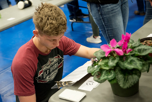 William Forrest, a sophomore at Hermitage High School, works on a floriculture exam during Thursday's Aggie Day at Crowder College in Neosho.<br /> Globe | Roger Nomer