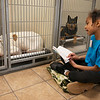 Jaiana Bruner, 8, Joplin, reads to dogs as the Jopiln Humane Society on Saturday.<br /> Globe | Roger Nomer