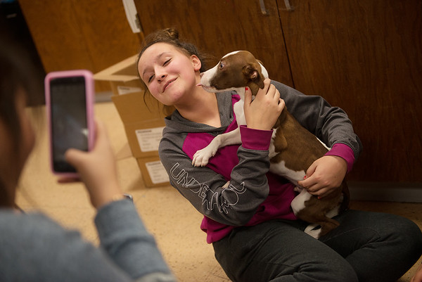 Bayleigh Parker, an eighth grader at Carthage Junior High School, gets an affectionate lick from Lincoln during a Wonder Women Club meeting on Monday at the school.<br /> Globe   Roger Nomer