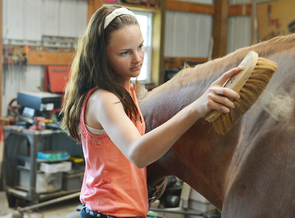 Globe/Roger Nomer<br /> Talyn Smith, 12, brushes her horse Beetz.