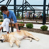 Globe/Roger Nomer<br /> Cindy Ashby, Spartanburg, S.C., pauses to reflect with her dog Bailey at the butterfly garden on Thursday. Ashby and Bailey worked with Samaritan's Purse following the 2011 tornado, and returned to Joplin for the anniversary.