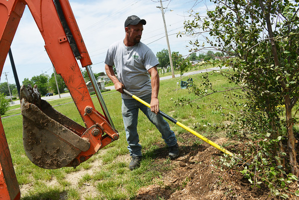 Globe/Roger Nomer<br /> Arthur Snethen, with Ozark Nursery, plants a River Birch at Par Hill Park on Monday afternoon.