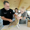 "Veteranarian Stephen Scott, left and Lisa Boston, of the Joplin Humane Society, install a microchip in ""Beau,"" an American bully pup during the Paws in the Park event on Saturday at Parr Hill Park. Also pictured, center is JHS board member Patti Nicoletti-Johnson.<br /> Globe 