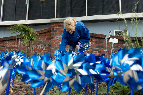 Globe/Roger Nomer<br /> Missy Morris sets up pinwheels in Spiva Park on Monday for the Pinwheels in the Park event. The pinwheels are a symbol of child abuse prevention, and they have been planted in gardens around town to raise awareness for that cause.