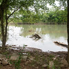 Globe/Roger Nomer<br /> The Elk River still has damage from recent flooding.