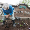Globe/Roger Nomer<br /> Sara Fisher digs a hole for butterfly milkweed at Ewert Park on April 28, 2017.