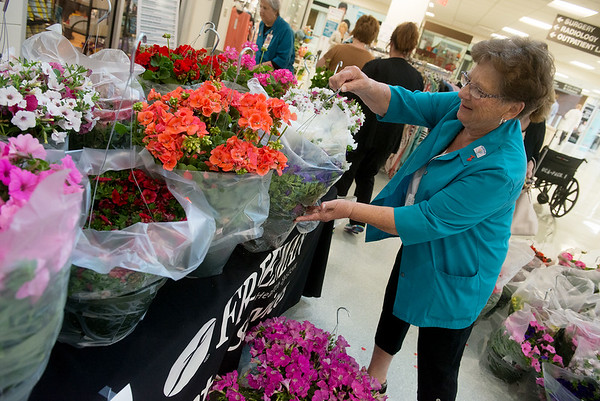 Globe/Roger Nomer<br /> Ruthann Hodson, a volunteer with Freeman Auxilary, arranges flowers during the annual Spring Plant Sale at Freeman West on Thursday morning. Proceeds from the sale go to help the Auxilary support programs such as the Bill & Virginia Leffen Center for Autism and Children's Miracle Network.
