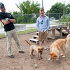 "From the left: Joplin Humane Society Kennel Tech Chad Calk and Jacob Adamson watch as shelter pup ""Annabelle,"" a hound mix and ""Lucy"" a golden retreiver mix already with a home, socialize on Thursday at the shelter. The shelter is full of large dogs ready for adoption.<br /> Globe 