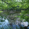 Globe/Roger Nomer<br /> A lake takes up a large portion of the Walter Woods Conservation Area.