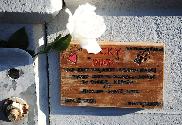 "Globe/T. Rob Brown<br /> A plaque for Lucky ""Duck"" as found by Amber Lucian Tyree, of Baxter Springs, Kan., while making her daily run over the historic Route 66 Rainbow Bridge Wednesday, Nov. 14, 2012, just southwest of Riverton, Kan."