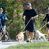 """From the left : Joplin Humane Society volunteers Sara Bybee, Rob Singh and Kelly Johnson take exuberant pups """"Ray Ray,"""" """"Gypsy"""" and """"Willodean"""" for a run on Thursday at the Joplin Humane Society.<br /> Globe 