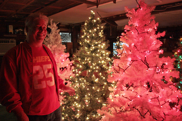 "Rob Curtis has been collecting trees since August for his Christmas forest. Here, he is pictured with some that fit in his ""man cave."""