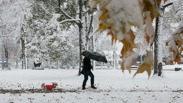 Diann Hayes walks with her dog Jazz in Central Park in Carthage on Monday.<br /> Globe | Roger Nomer