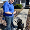 Kyna Adams works withwith Declan III, a labrador retriver that she and her mother, Mary Green, are training as a service dog through Canine Companions.<br /> Globe | Laurie SIsk