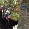 Caleb Houston, with Joplin Parks and Rec, puts up Christmas lights at Campbell Parkway on Thursday afternoon.<br /> Globe | Roger Nomer