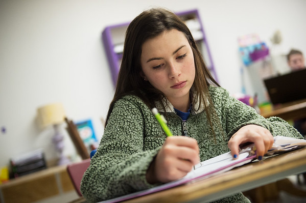 Ava Williams, seventh grader at Sarcoxie Middle School, works during academic lab at Sarcoxie High School on Friday.<br /> Globe | Roger Nomer