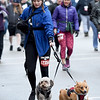 Christian Novak keeps pace with her two pups during the 8th Annual Joplin Turkey Trot on Satuday in downtown Joplin.<br /> Globe | Laurie Sisk