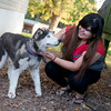 Globe/Roger Nomer<br /> Kassandra Medrano plays with her dog Lobo on Thursday at her home in Monett.