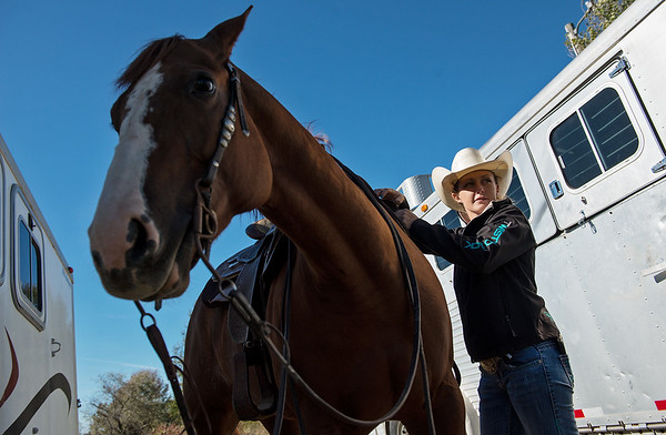 Globe/Roger Nomer<br /> Annie Chance saddles her horse Hot Rod Whiz before training on Wednesday.
