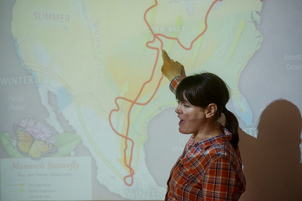 Globe/Roger Nomer<br /> Sara Dykman talks about her travel route following monarch butterflies during a presentation on Monday at Thomas Jefferson Elementary.