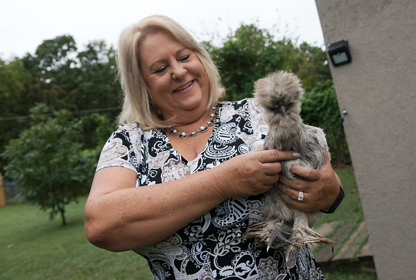 Sharon Rogers talks about her chickens including Posh Spice during an interview at her Carl Junction home on Wednesday.<br /> Globe | Roger Nomer