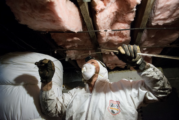 Joe McManus installs floor insulation in a house on Moffet Street in Joplin on Tuesday.<br /> Globe | Roger Nomer
