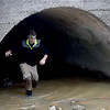 Pittsburg State University biology major Jake Wright emerges from a storm drain where gray bats roost in Pittsburg. PSU researchers are monitoring incidents of white nose syndrome, which can be fatal to bat colonies.<br /> Globe | Laurie Sisk