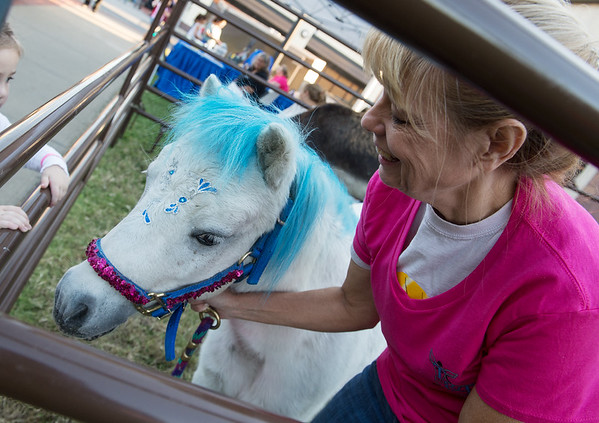 Laurel Stebbins dresses her miniature horse Blue as My Little Pony for Third Thursday in Joplin. Blue was adopted from T&D Donkey Rescue in Liberal.<br /> Globe | Roger Nomer