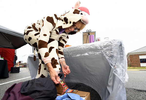 "Amy Beck transforms into ""Daisy"" the cow as she prepares to hand out treats at her Hershey's Ice Cream booth on Tuesday night at Carl Junction's Octoberfest.  The event featured trick or treating, vendors and a beer garden.<br /> Globe 