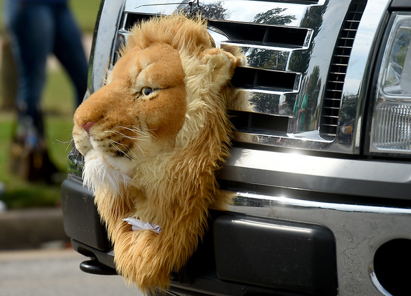 The MIssouri Southern Kinesiology Club dons a lion's head on the grill of a truck during Missouri Southern's 2019 Homecoming Parade on Saturday at MSSU.<br /> Globe | Laurie Sisk
