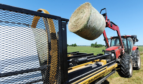 Ricky Roberson of Anderson, a farm worker with the Southwest Center, adds a bale of hay to a tube-line balewrapper Thursday morning, Sept. 5, 2013, at a University of Missouri farm near Mount Vernon.<br /> Globe | T. Rob Brown