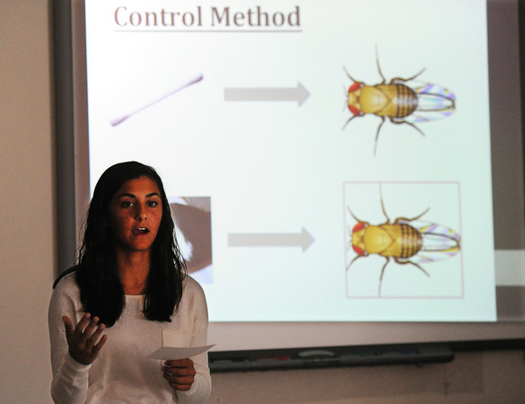 Laela Zaidi, Joplin High School senior, gives a report on fruit fly research Thursday afternoon, Sept. 5, 2013, during a Journal Club session for her science resarch class.<br /> Globe | T. Rob Brown