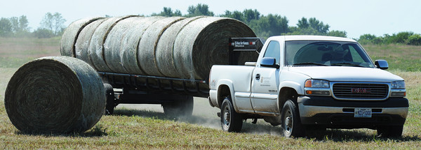 Stan Wilken of Friestatt, a farm worker with the Southwest Center, hauls eight bales of hay to a new location Thursday morning, Sept. 5, 2013, at a University of Missouri farm near Mount Vernon.<br /> Globe | T. Rob Brown