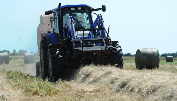 Dallas Ross, a farm worker with the Southwest Center, creates bales of hay Thursday morning, Sept. 5, 2013, at a University of Missouri farm near Mount Vernon.<br /> Globe   T. Rob Brown