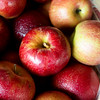 Globe/Roger Nomer<br /> Jonathan apples are for sale at Murphy Orchard.