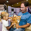 "Four-year-old Jillian Sheherd gets acquainted with Dan Goepfert's three-year-old Maine Coon, ""Khyron"" during the American Cat Fanciers Show on Saturday at the Joplin Convention and Trade Center. The show continues on Sunday at the center.<br /> Globe 