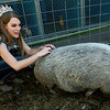 "Pittsburg State student Shannon McLachlan, Miss Kansas 2016 for the Miss Nationwide pageant, tries to strike up a friendship with ""Bacon,"" a rescue pot bellied pig, during an adoption event at Golden Paws Animal Resort on Tuesday.  The no-kill shelter, which recently took in 21 chihuahuas from a hoarding situation, is in the midst of a fundraiser to help feed the animals and upgrade and improve its facilities.<br /> Globe 