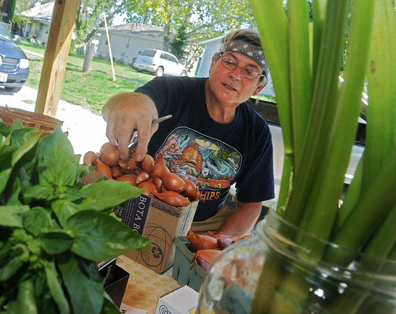 Globe/Roger Nomer<br /> Chris Sharpsteen separates shallots at his booth at the Webb City Farmers Market on Tuesday morning.  Sharpsteen said he uses mostly organic methods for farming.