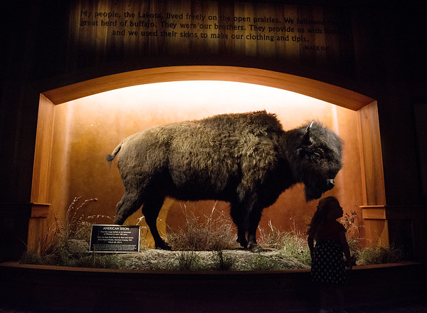 The Wonders of Wildlife National Museum and Aquarium features a tribute to Native American natural conservation efforts.