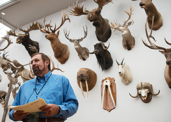 Globe/Roger Nomer<br /> Rob Keck, chairman of the board of the Wonders of Wildlife Museum, talks about a recreation of the head and horns exhibit of 1908 from the Bronx Zoo on Tuesday at the Wonders of Wildlife National Museum and Aquarium. The exhibit was originally created by President Theodore Roosevelt, made of animals he feared would become extinct.