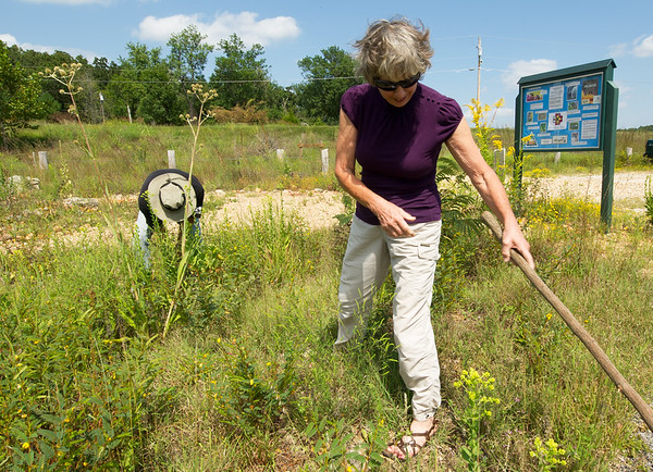 From the left: Randal Switzer and Donna Cole, of the Chert Glades Chapter of Missouri Master Naturlaists, clear invasive plants and debris in preparation for the planting of pollinator-friendly plants at the Wildcat Glades trailhead near Redings Mill Bridge on Friday. Cole is the program director for the project, which received a $5,000 grant from Bayer's Feed A Bee Program. <br /> Globe | Laurie Sisk