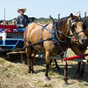 Robert Kelsheimer, of R&D Kelsheimer Trick Horses, Inc., takes guests on a horse-drawn ride during The George Washington Carver National Monument's Prairie Day on Saturday. Kelsheimer's rig was one of seven offering rides to guests and was adapted to accommodate wheelchairs.<br /> Globe | Laurie Sisk